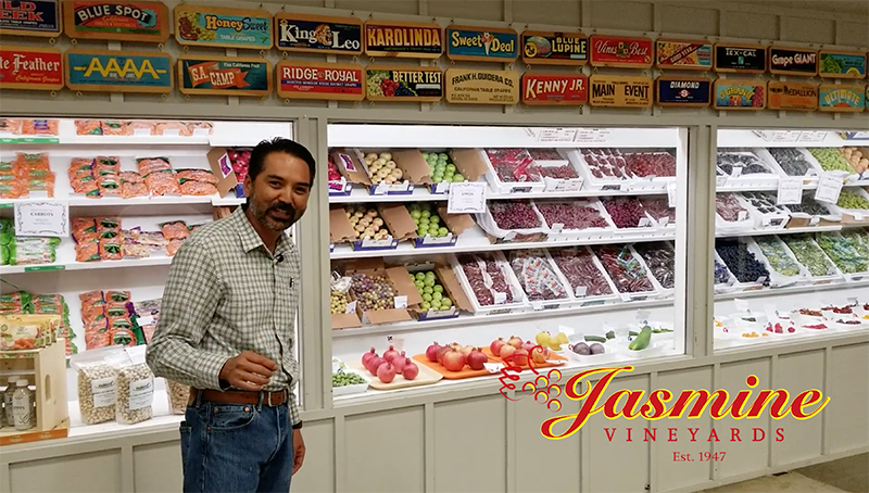 Jasmine Vineyards places First at Kern County Fair 2018