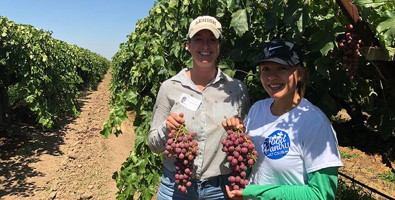 Cal State Bakersfield Student Visit Jasmine Vineyards