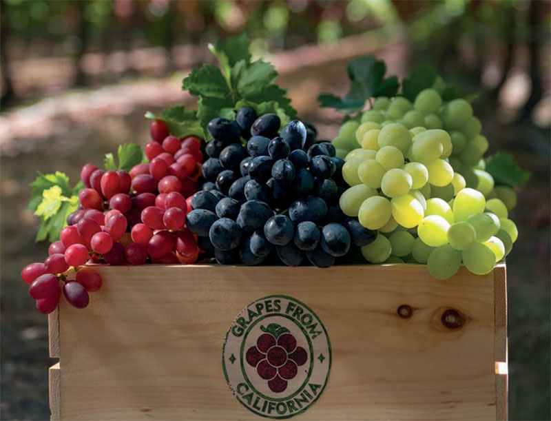 Grape Merchandising and Display Tips for 2019
